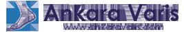 Ankara Varis Logo